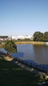 浦山公園池
