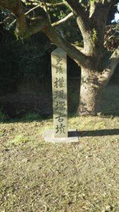 権現塚古墳石碑