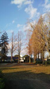 玉垂命神社公園2