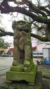 諏訪神社狛犬アップ