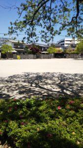 諏訪野町公園広場