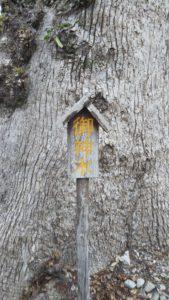 国分日吉神社ご神木字