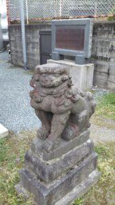 小頭神社狛犬右