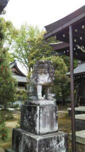 松陰神社狛犬左